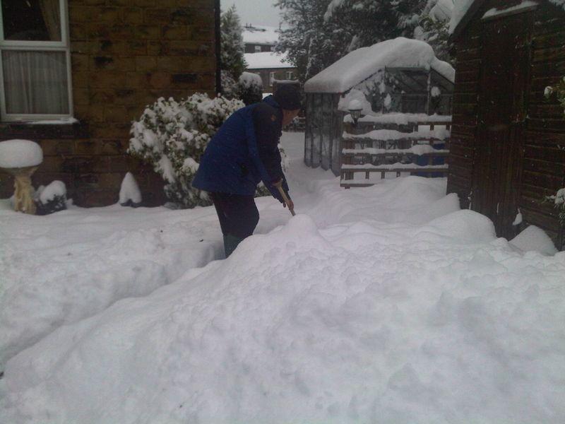 Snow decemeber 2010 (21)